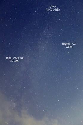 20140731_002807a.jpg