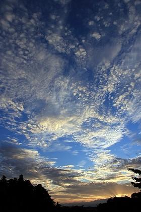 20120806_050943.jpg